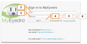 Screenshot of MyEyedro Client - Signing In
